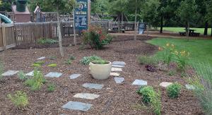 Sensory Garden 2