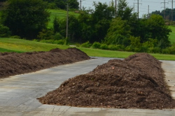 Composting Rows