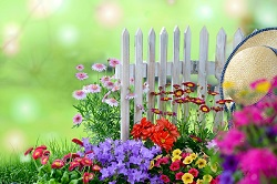Beautiful-Flower-Garden-With-Hanging-Flower-rattan-hat-white-fence