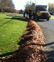 leaves-in-windrow2-jpeg